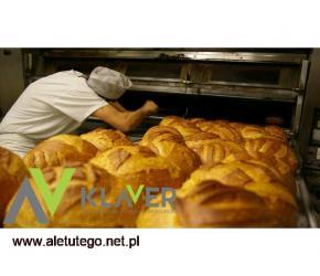 Belgia/Holandia, praca od zaraz jako piekarz